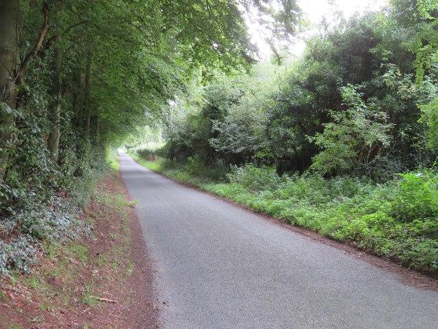 Farleigh Lane approaching Dummer