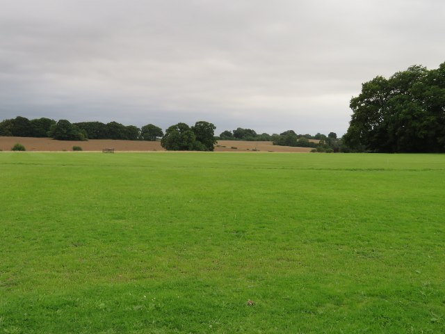 Fields by Manor Farm