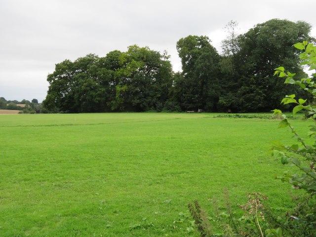 Cricket field near Dummer