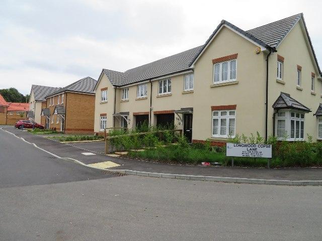 Longwood Copse Lane