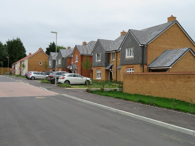Longwood Copse Lane