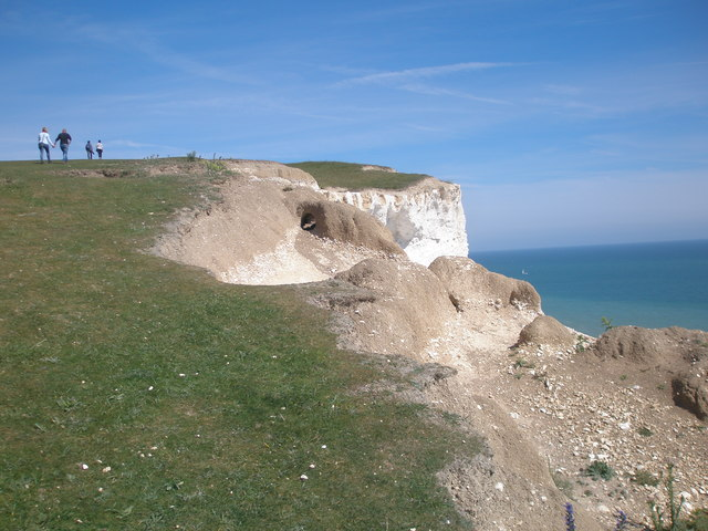 Biological weathering of cliff edge near Shooters Bottom