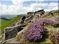 SK2581 : On Higger Tor by Graham Hogg