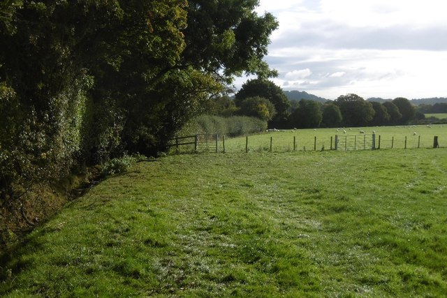 Fields near Riley Cottages