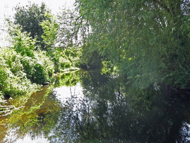 The River Colne west of Wallingford Road (2)