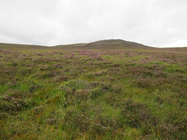 Cnapan Garbh above Geldie Burn near Braemar