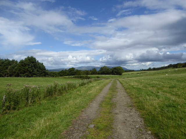 Track to the old quarry, Gargunnock