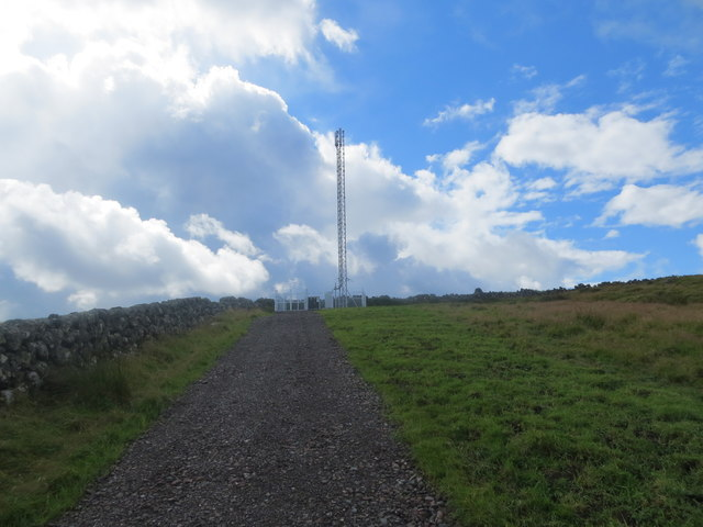 Telecom mast above Airie Farm