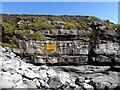 G7068 : Rocks at St. John's Point by Kenneth  Allen