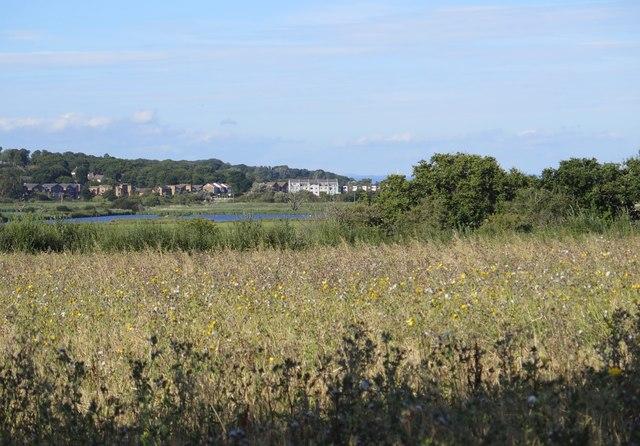View towards River Yar flood plain from Public Footpath BB20