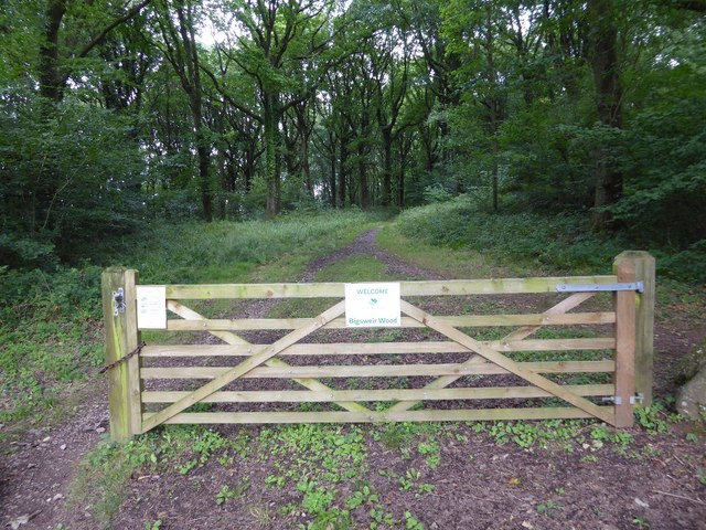 Gate into Bigsweir Wood