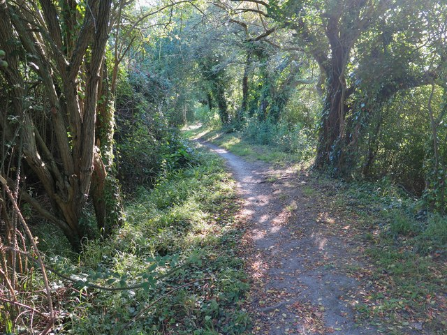 Old sea wall, Centurion's Copse, Isle of Wight