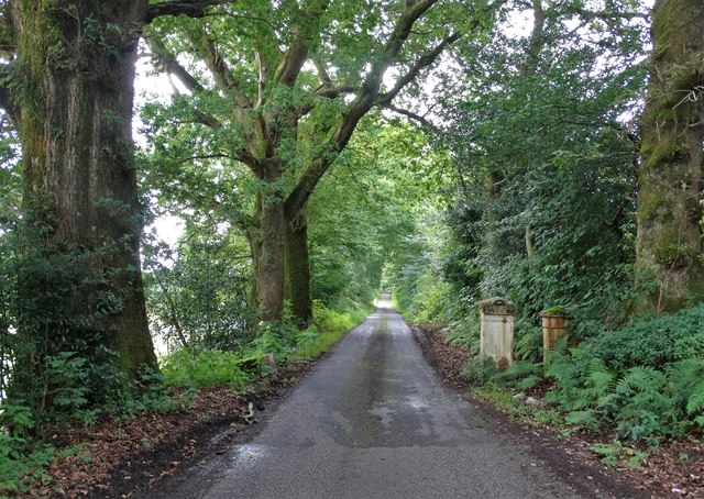 Driveway to Kirkconnell House