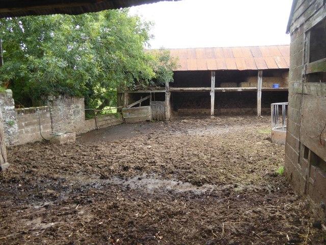 Brithayes Barn farmyard