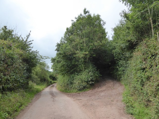 Road and lane at Little Brithayes