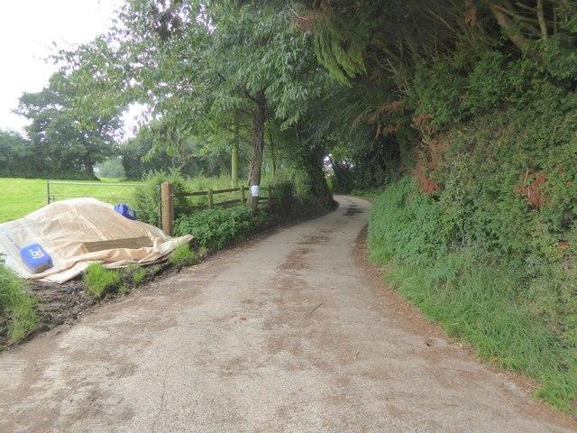 Access road to Shutelake Farm