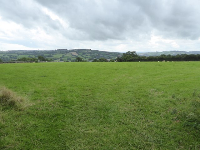Looking south over Butterleigh