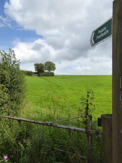Footpath to Butterleigh