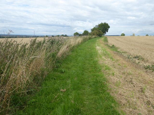 Bridleway off Gorse Hill Lane