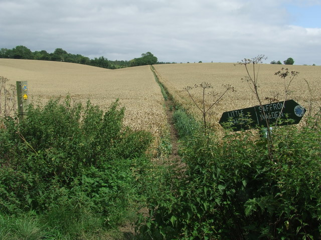 Footpath And Field