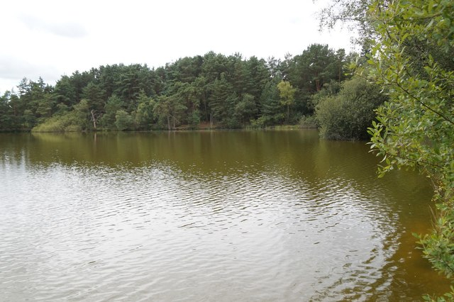 The Moat lake, Thursley Common