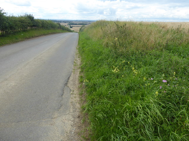 The hill on Gorse Hill Lane