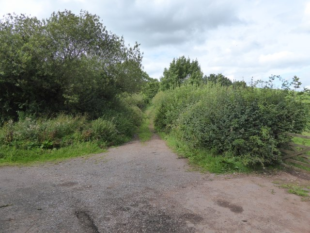 Track (right of way) over Cat's Hill to Major Cross