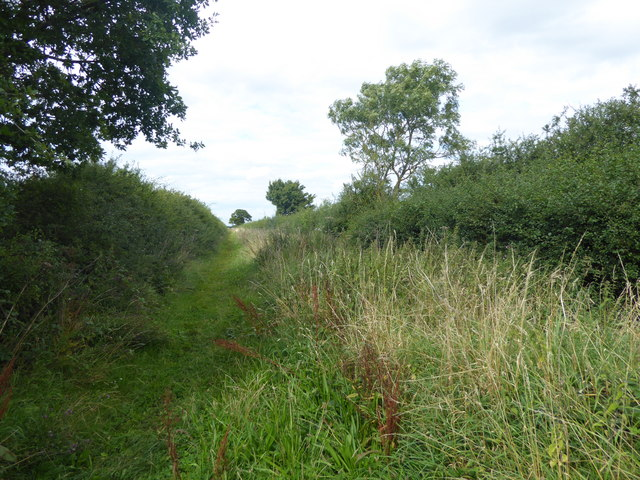 Bridleway off Gorse Hill Lane