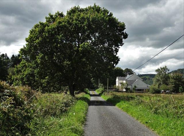 Lane to Meikle Richorn
