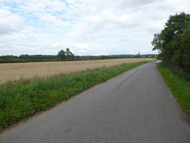 Brant Road