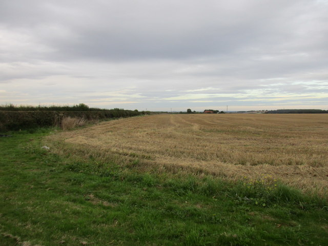 Stubble field near Knapthorpe