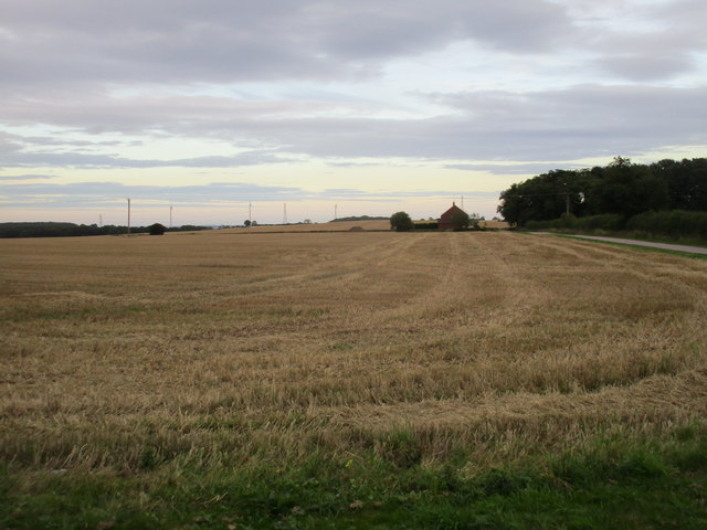 Stubble field near Knapthorpe