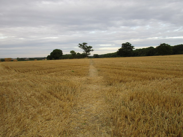 Footpath to Readyfield Farm