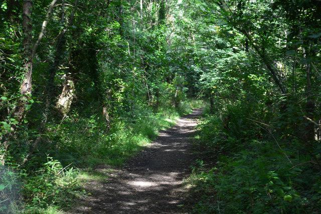 Neath Port Talbot : Footpath