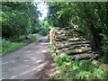 SU9624 : Log stack next to Footpath by Peter Holmes