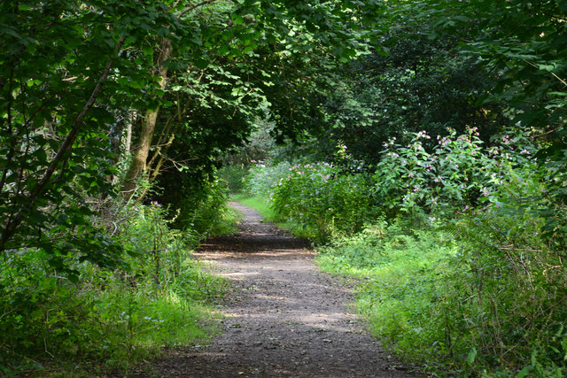 Neath Port Talbot : Footpath