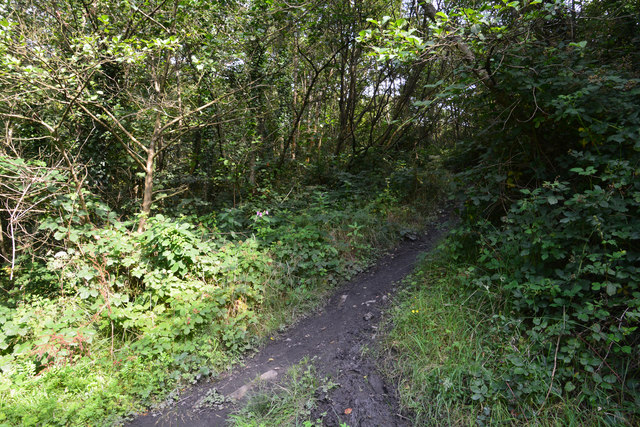 Neath Port Talbot : Muddy Path