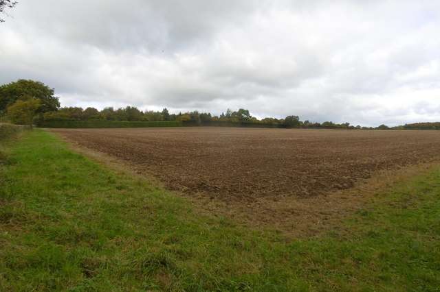 Cultivated field, Upper Sapey