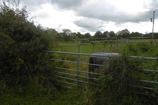 A gate, Three Gates