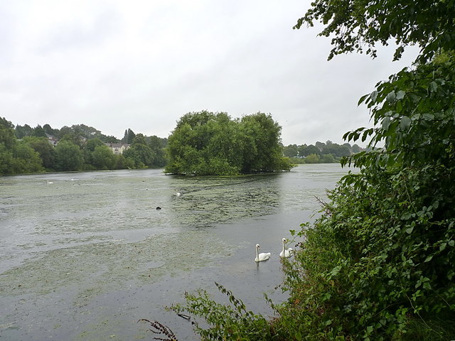 Brookvale Park lake