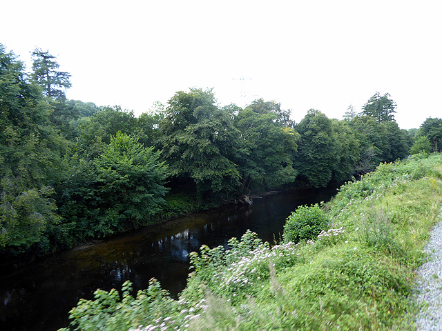 The River Dart near Stretchford