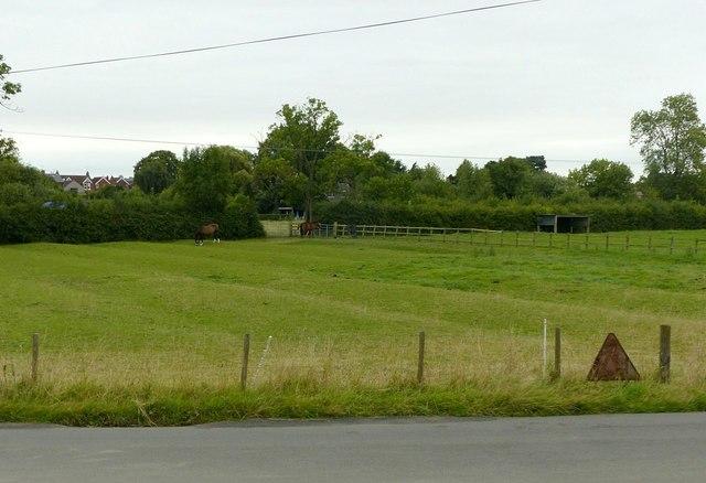 Ridge and furrow near Draycott