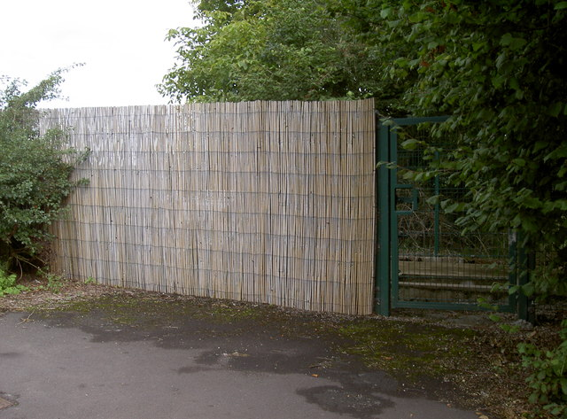 A bamboo curtain - in Blagdon