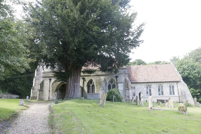 Yew by the Church