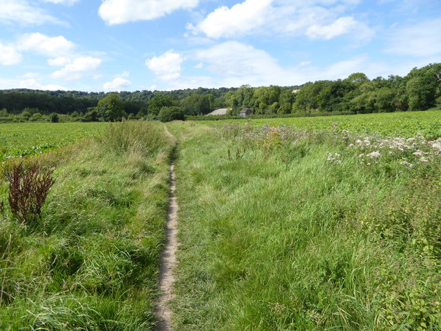 Looking from bridleway across Barrow Green Road to buildings