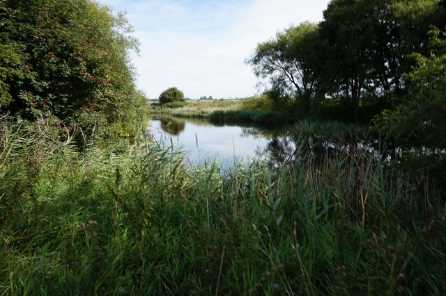 Pond near Hempholme