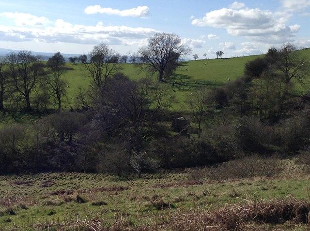 Site of abandoned farm on Lan Fawr hill near Old Churchstoke