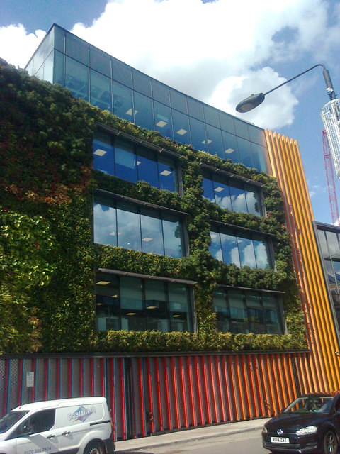Part of the Living Wall on the Camden Lock Studios