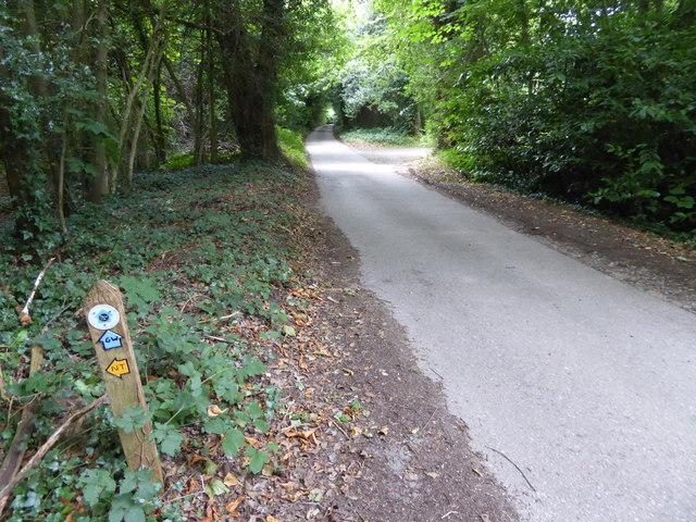 London Countryway in Surrey (26)