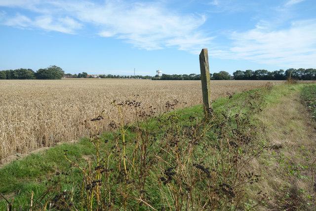 Farmland still hanging on